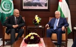 أبو الغيط يؤكد أهمية وضع القضية الفلسطينية على قمة أجندة عمل المجتمع الدولي