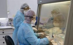 """""""الصحة"""" بغزة: قرب نفاد المسحات اللازمة لتشخيص (كورونا) ونمر بأزمة دوائية صعبة وخطيرة"""