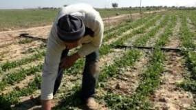 التحرير الفلسطينية: فتح سدود المياه صوب الأراضي الزراعية إجرام ممنهج