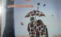 بسمة المشهراوي كاتبة تحلق في سماء الأدب