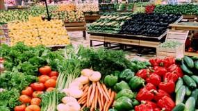 الاقتصاد الوطني: الاحتلال يمنع تصدير المنتجات الزراعية الفلسطينية إلى العالم