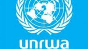 """وقفة سلمية أمام مقر الأمم المتحدة تحت شعار """"اتحدوا من أجل السلام"""""""