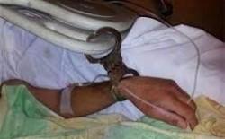 أسرى فلسطين: كافة المواطنيين الفلسطينية الذين اعتقلوا من قبل جيش الاحتلال تعرضوا للتعذيب