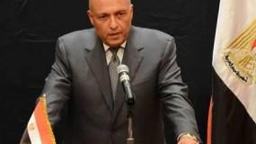 شكري يتهم مجلس الأمن بالتنصل من مسؤولياته تجاه فلسطين ويدعو العرب للتكاتف