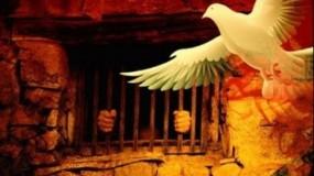"""الشعبية تهنئ الأسير حسن فطافطة """"أبو تامر"""" بتنسمه عبيق الحرية"""