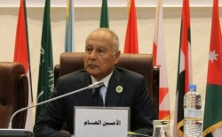 أبو الغيط: القضية الفلسطينية تعرضت لاختبار قاس وهناك فرصة لتصحيح المسار