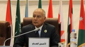 أبو الغيط: حق الشعب الفلسطيني في إقامة دولته على رأس التحديات