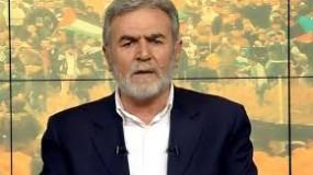 زياد النخالة: الانتخابات المقبلة يراد منها الوصول لحكومة معترف بها لاستكمال المفاوضات الميتة